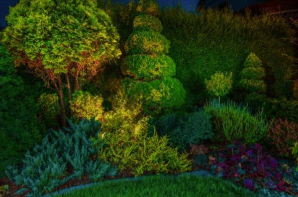 Southern Landscape Lighting Systems Answers Your 5 Top Questions on LED Landscape Lighting in Alpharetta, GA 5